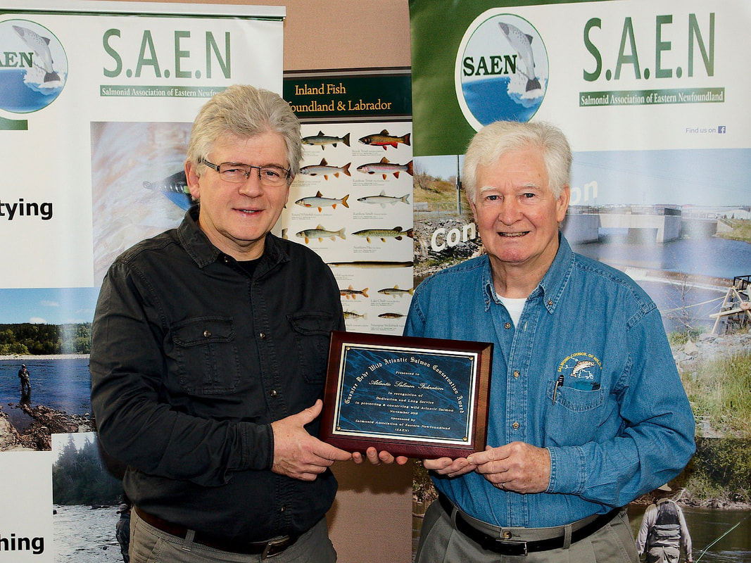 Leo White receives Guenter Behr Award on behalf of ASF